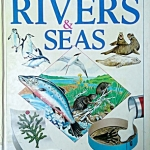 Rivers and Seas